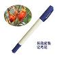 健通泽长效皮肤记号笔(放疗记号笔)
